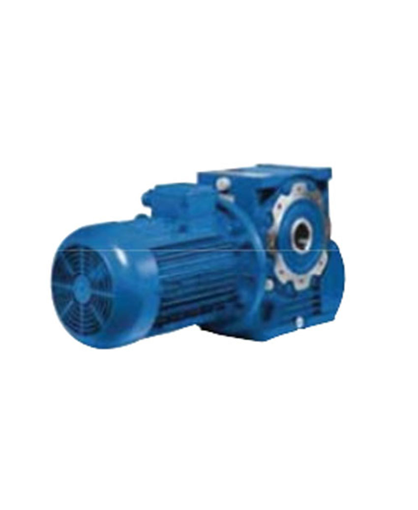 WORM GEAR REDUCERS AND GEARMOTOR