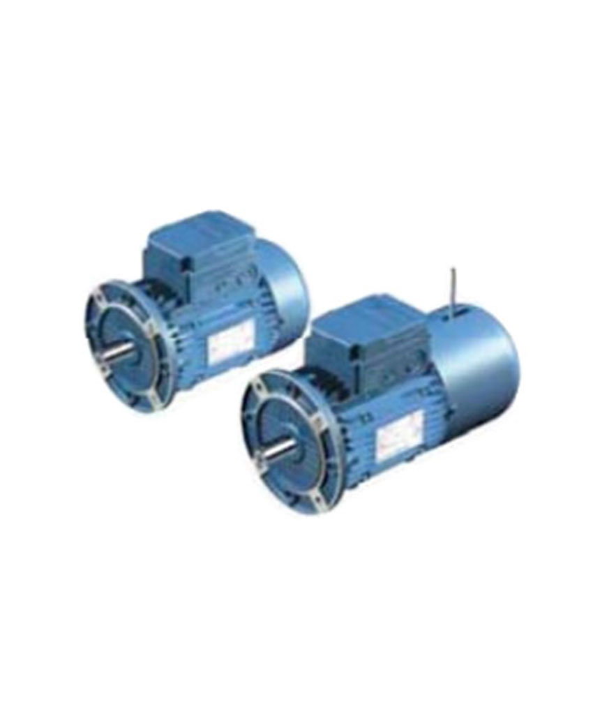 ASYNCHRONOUS THREE-PHASE STANDARD AND BRAKE MOTORS